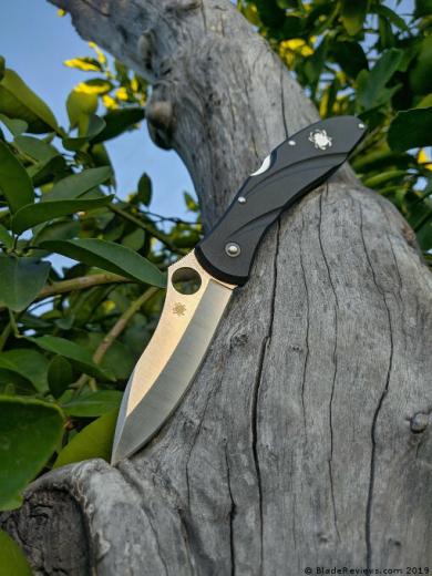 Centofante 3 Spyderco - нож офисного обывателя
