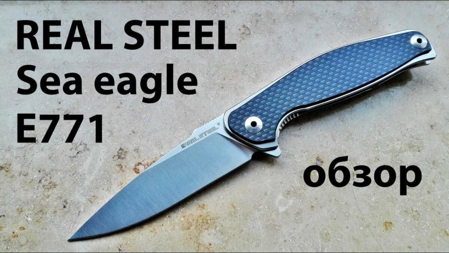 Большая хищная птица от Real steel