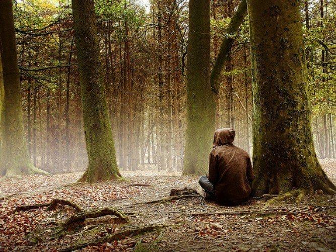 С каким ножом для выживания не страшно заблудиться в лесу?