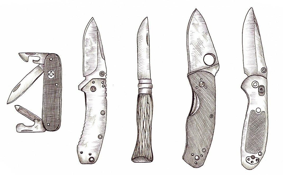 Критерии выбора ножа на каждый день и три хороших модели для повседневного ношения